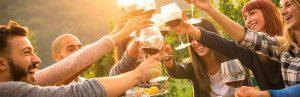 Wines Tours